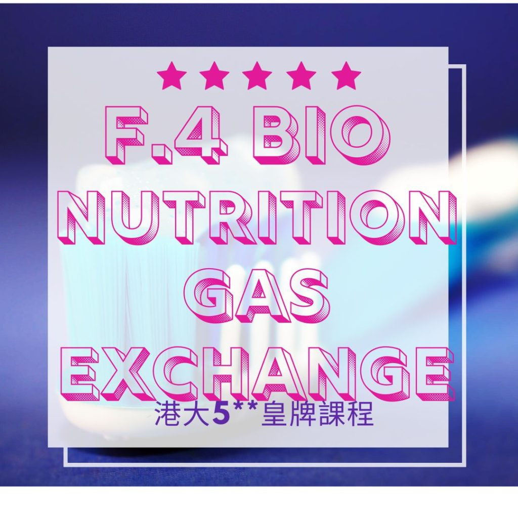 F4 biology nutrition and gas exchange in plants Sharon 2