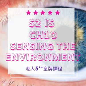 F.2 IS Ch10 Sensing the Environment Lesson 4 4
